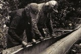 "Jocko Carle and Basil Smith peeling birch bark for a new canoe ; from ""'Building an Algonquin Birchbark Canoe '' ; photo- Henri Vaillancourt 1980"